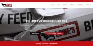 indianapolis web design